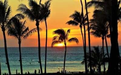 Viaggio di Nozze, viaggio alle Hawaii